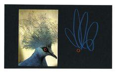 blueBIRDred   anthony zinonos works