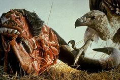 Robert Bateman - Paintings #painting #cow #meat #vulture #buffalo #water buffalo