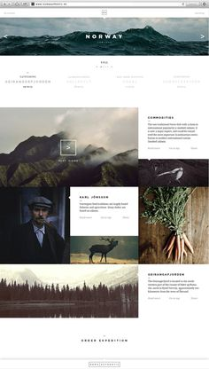 Noma Authentic #clean #simple #grid #website #layout #web