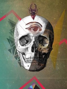 david▲fallow on the Behance Network #geometry #fallow #eye #calavera #skull #david