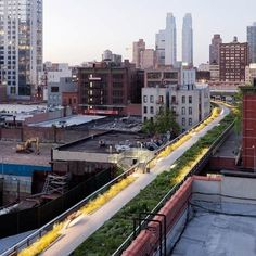Dezeen » Blog Archive » The High Line Section 2 opens #line #park #railway #york #high #new