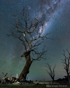 Stunning Night Sky and Milky Way Photography by Richard Tatti