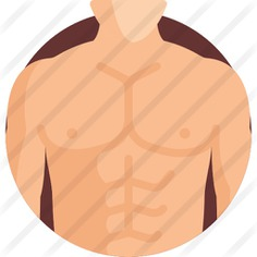 See more icon inspiration related to healthcare and medical, anatomy, abs, fitness, body parts, waist, beauty, diet, muscles, fit, body, medical, healthy and man on Flaticon.