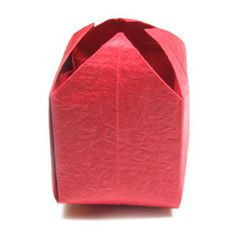 How to make an origami tulip (http://www.origami-flower.org/howto-origami-tulip.php)