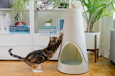 WISKI Launches with Two Modern Cat Scratchers - Design Milk