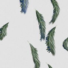 background #pattern #tropical #palm tree