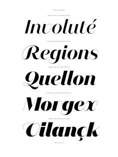 Domaine Sans Typeface Family | Australian Design Biennale #ff