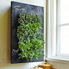 GroVert Chalkboard Wall Planter
