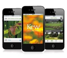 Make It Clear creates Kew Gardens app | News | Design Week #gardens #app #skew #kew