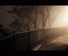 Photography by Jos Kuklewski