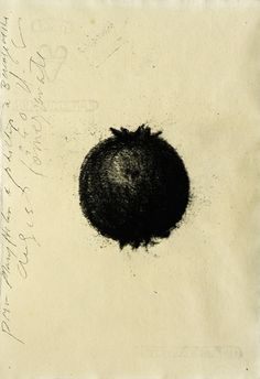 mondonoir — Donald Sultan, Untitled (Pomegranate), Charcoal on... #pomegranate #sultan #untitled #donald #charcoal #on #1990 #paper