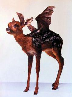 Google Image Result for http://poulpe-et-cocaine.com/laurent/writerdatabase/files/2012/02/tumblr_lz6q8eeJT11qe31lco1_r2_500.png #grunfeld #sculpture #thomas