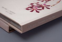 Marque: The Lumiere — Collate #book #thisiscollate #cover #marque #lumiere