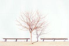 J Bennett Fitts Photography #landscaping #j #bennett #fitts #photography #industrial
