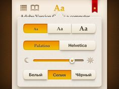 Text settings for book reader #iphone #book #ui #reader
