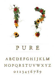 Novo Typo - PURE - Type specimen #novo #design #typeface #typo #typography