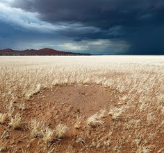 The Namibian Desert by Hougaard Malan #inspiration #photography #nature