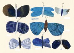 drawings + illustrations by Emma Lewis #butterfly #illustration