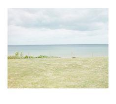 Grass, fence, sea, sky, lawn, seaside, horizon, pastel, green