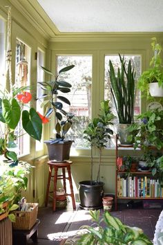 Sunroom on Apartment Therapy #plants #interior #decor