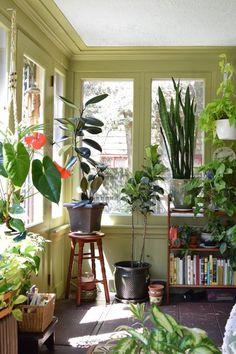 Sunroom on Apartment Therapy #plants #interior #decor