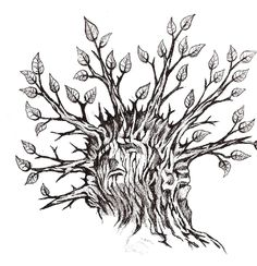 Land of the Tree sketch - illustration by Zach Johnson