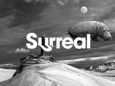 Surreal Identity #vector #branding #icon #design #type #brand #mono #identity #typeface #symbol #logo #typography