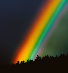 Circa 1983 The Photo Roll of Owen Perry #rainbow #photography