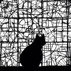 Waiting #ilustracao #gatopreto #blackcat #instacat #bw #blackandwhite #pretoebranco #illustration #print #placementprint #estampas #estampa #estampalocalizada #analau #instailustra #instaillustration #photoshop