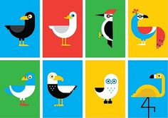 Ryan Chapman, Birds YCN #illustration #minimal #icon #bird #birds
