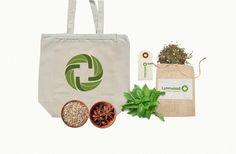 LYNNWOOD NATURAL MEDICINE #vietnam #agency #branding #leaf #cao #thit #design #thng #k #hiu #logo #cp #bratus #green
