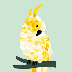 #nordic #design #graphic #illustration #danish #bright #simple #nordicliving #living #interior #kids #room #poster #cockatoo #bird #yellow