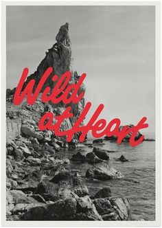 Wild at Heart : Klas Ernflo #graphic design #typography #poster #photography