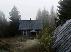 b2ap3_thumbnail_Forest Animals in Abandoned Houses by Kai Fagerstrom 23 600x439.png #photo #abandoned #house
