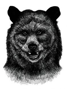 Kristina Krogh Larsen #bear #ink #drawing