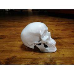 skull by NooN