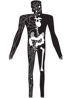 logo #human #body