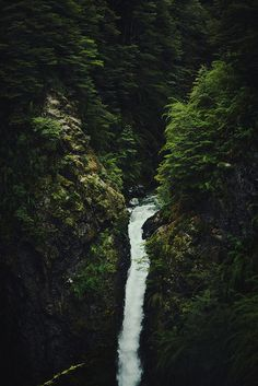 photo #photography #green #dark #water #nature #trees #waterfall #rich