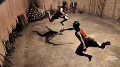 Kalaripayattu Fighters, India