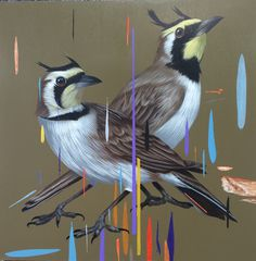"""Double Horned Larks"" (2016), acrylic on panel, 12″ x 12″ by Frank Gonzales #birds #rain #paint"