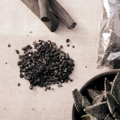 Mix this charcoal with soil to help #plants grow healthier. #productdesign #industrialdesign