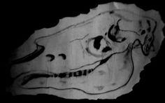 VINCENT #skull #horse