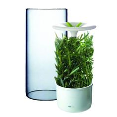 Keep your herbs fresher for longer with this antibacterial preserver. #modern #design #product #industrial #technology