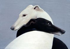 ying and yang dogs.