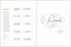DOYALD YOUNG | BOOKS #calligraphy #type #process