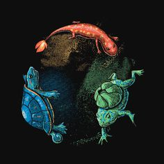 Starters Shirt Pokemon Realistic Animals Tee – Wear Viral #amphibian #pokemon #newt #illustration #painting #turtle #animal #frog