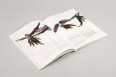 Graphic-ExchanGE - a selection of graphic projects #magazine