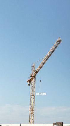 #crane PHOTOGRAPHIE © [ catrin mackowski ]