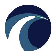 Seattle SeahawksA little explanation:Hawk + Waves in team colors. #matt #logo #sport #mcinerney