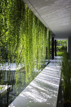 The Pure Spa is an Oasis of Tranquility and Relaxation